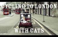 Cycling to London With Cats